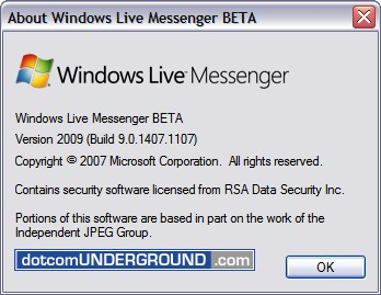 Windows Live Messenger 9 - Version Info