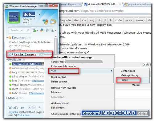 MSN Messenger - View Profile
